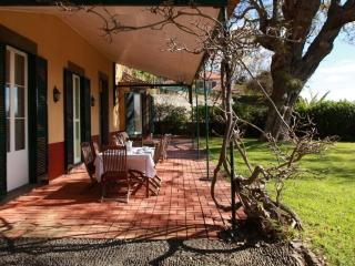 Quinta das Malvas - Rosemary, Funchal