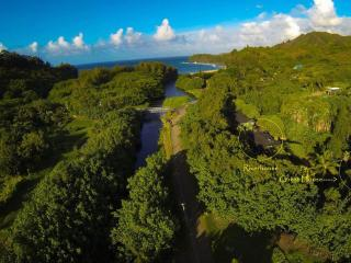 Drone view towards the beach from over River Estate. 3 Blocks away or paddle down the river and back