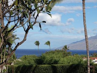 Maui Kamaole Ocean View 1 Bedroom L102, Kihei