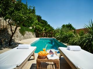 Villa Lemonia with Private Pool and Sea View, Trsteno