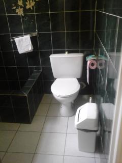 salle de bain à côté du séjour au rez-de-chaussée