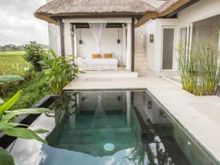 Plunge pool and luxury-styled traditional bale (pronounced bah-lay, it is a Balinese daybed)