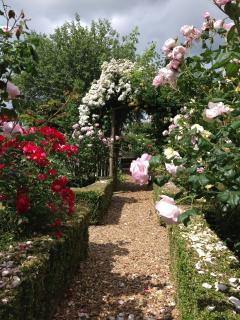 Box hedging surrounds the rose beds leading through to the apiary.