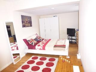 Lovely Studio, West Ham,Olympic village,London,E15