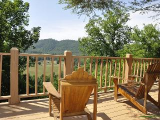 Hill Top Hideaway- Rustic, Secluded, Amazing Mountain Views, Pet Friendly