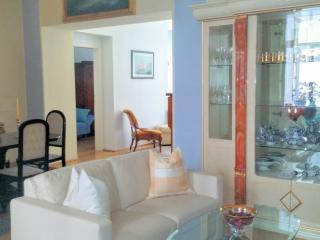 Apartment 1 minute from State Opera and Ring, Vienna