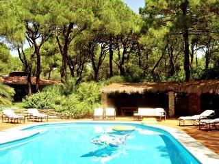 Villa Yuppi Du, Pian di Rocca