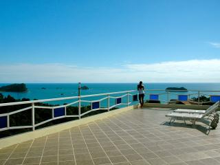 Monkeys Galore! Amazing Ocean Views, Pool & Waterf, Parc national Manuel Antonio