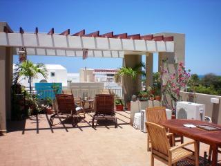 El jardín Buda, Cabo Rojo