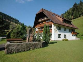 Vacation Apartment in Bad Rippoldsau-Schapbach - 377 sqft, 35sqm, max. 3 people (# 8636)