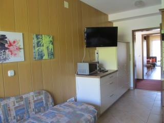 Vacation Apartment in Seebach (Baden) - 431 sqft, 1 bedroom, max. 2 People (# 8666), Ottenhoefen im Schwarzwald