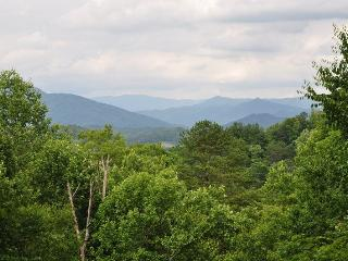 Southern Comfort - Hot Tub, Incredible View, Fire Pit and More at this Conveniently Located Mountain Paradise, Bryson City