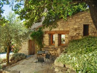 Charming studio with BBQ terrace, Forcalquier