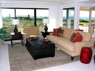 Ocean Front lower level 1 bedroom condo in Seascape Sur complex