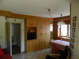 Cavalese: appartamento in villa con giardino