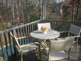 Hampton Luxury Vacation Home, Westhampton Beach