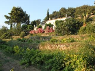 La maison de la Cadière, La Cadiere d'Azur