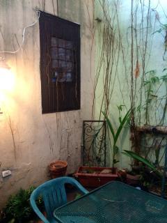 Patio/kitchen window