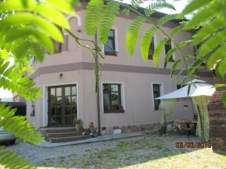 Nice Mansion  near Transfagarasan road, Curtea de Arges