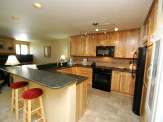Liftside Condominium 21 - Completely remodeled, updated appliances, ski area views, walk to slopes!, Keystone