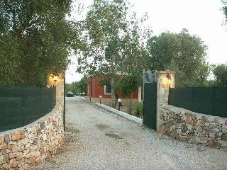Il viale d'ingresso della proprietà