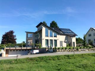 Villa luxueuse 15min Montreux (piscine + jacuzzi), Chatel-Saint Denis