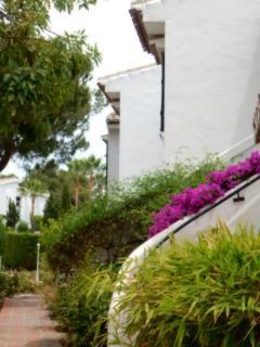 Entrance steps at back of property