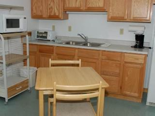 Hotel Style Room with Kitchenette, Futon and Full Bath at Three Rivers Resort in Almont (Lodge Room B)