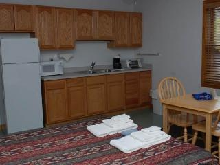 Hotel Style Room with Kitchenette, Futon and Full Bath at Three Rivers Resort in Almont (Lodge Room C)
