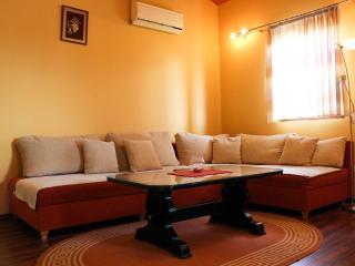 Comfortable and spacious apartment, Zadar