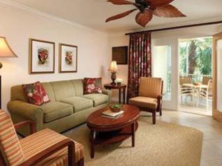 Luxury 2 Bed 2 bath at Sheraton Vistana Resort