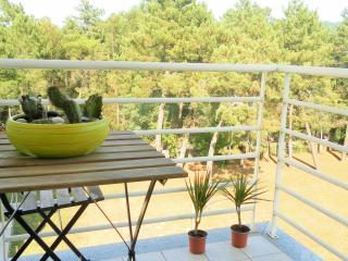 Cabedelo Beach Apartment, Viana do Castelo