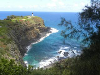 The Point at Poipu...BOGO 2nd week half price