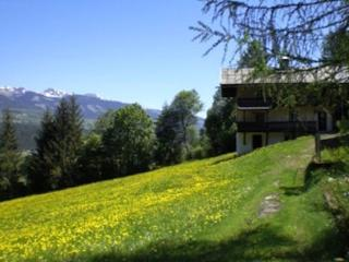 Vacation Apartment in Bramberg am Wildkogel - 20850 sqft, spacious, bright, active (# 8814), Thumersbach