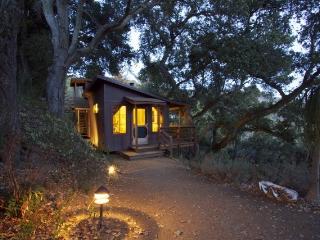 Big Sur Craftsman Cabin w/Sauna