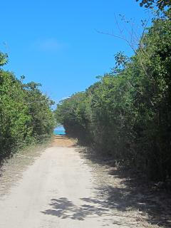 Path to dock and Sea of Abaco