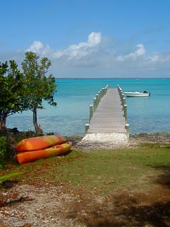 Take your kayaks out onto the Sea of Abaco or into the creeks.