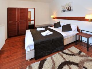Depandance Magnolia Apartment B 4+2 T.Lomnic