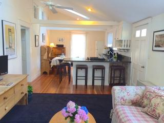 Sunny Contemporary Cottage - Walk to town!, Edgartown