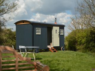 Cobbe Place Farm Shepherds Hut, Lewes