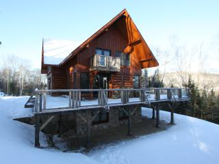 Candian Log House, Montreal