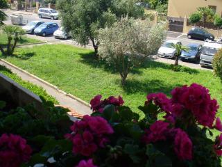 ..verdeazzurro, Ladispoli
