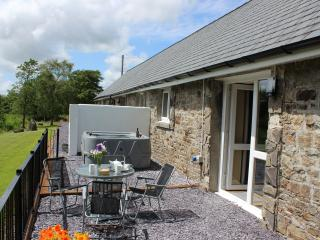 Dog friendly, walkers haven with hot tub, Llandeilo