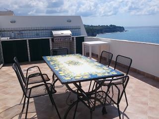 Seaside terrace with dining table & BBQ