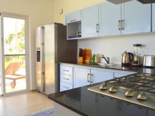 Fully equipped kitchen with oven, stove, microwave, coffee machine, toaster, blender, kettle and a l