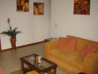 COMFORTABLE TWO-BEDROOM APARTMENT IN POBLADO, Medellin