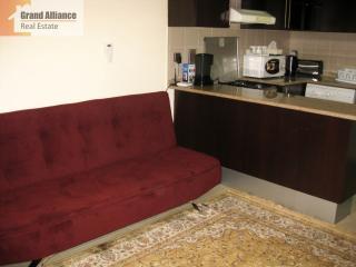 Cozy studio near the Gulf #ARS17, Dubai