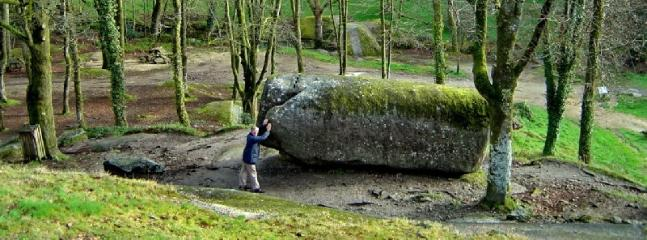 The rock tremblante, forest of Huelgoat