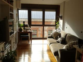 COZY APARTMENT SANTANDER CITY CENTER- WIFI, Santander