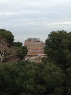 Scorcio del Teatro Massimo, visto dal terrazzo di casa.